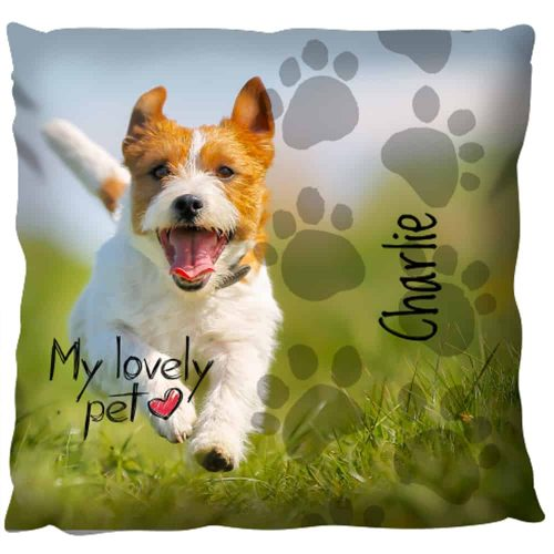 Photo Gift Pillow - Pets